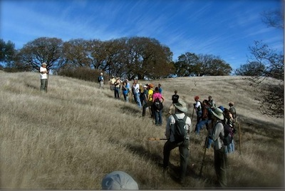sonoma mountain trail volunteer