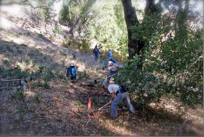 sonoma mountain trail restoration
