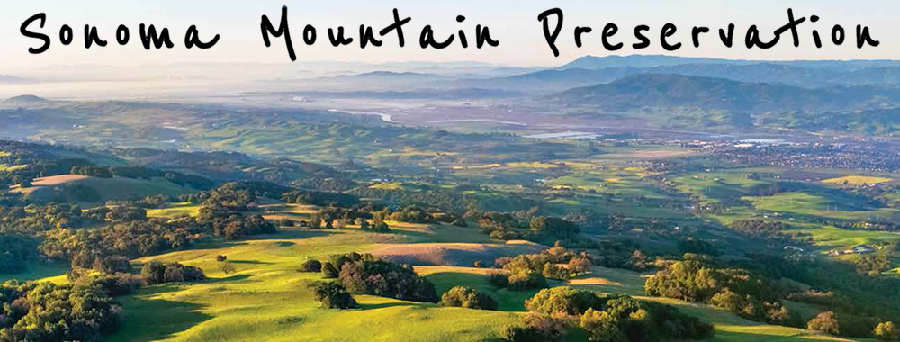 Sonoma Mountain Preservation